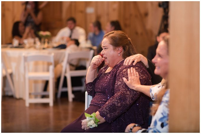 Navy Blue Blue Ridge Mountain Wedding Faithbrooke Farm Vineyard Luray Virginia Wedding Photographers_7298