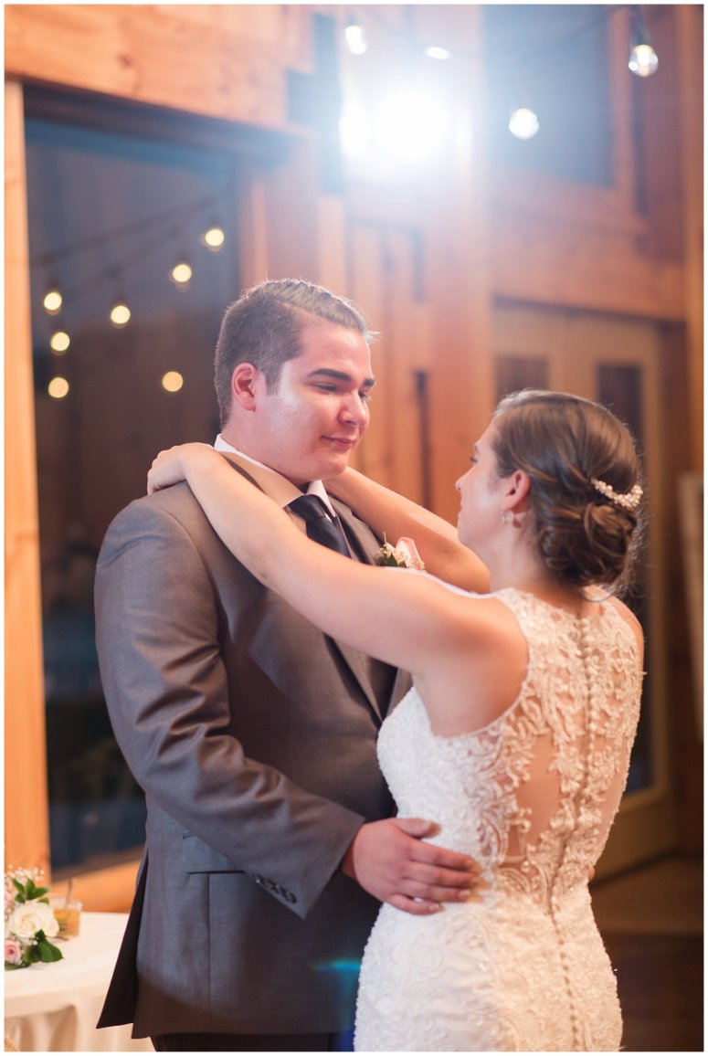 Navy Blue Blue Ridge Mountain Wedding Faithbrooke Farm Vineyard Luray Virginia Wedding Photographers_7299