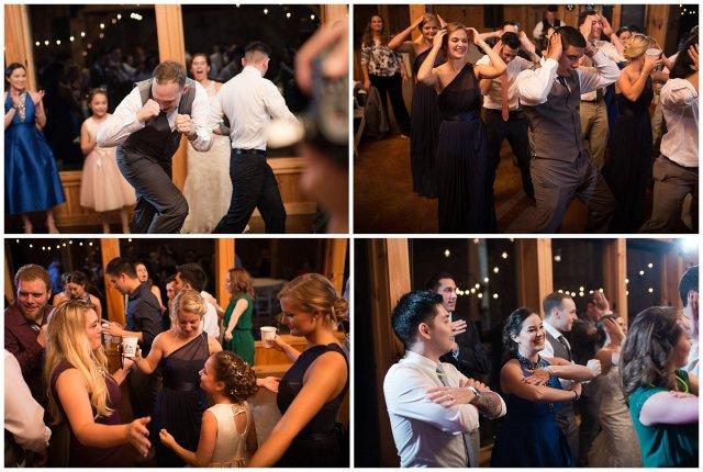 Navy Blue Blue Ridge Mountain Wedding Faithbrooke Farm Vineyard Luray Virginia Wedding Photographers_7322