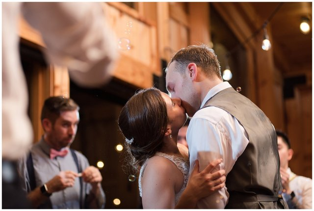 Navy Blue Blue Ridge Mountain Wedding Faithbrooke Farm Vineyard Luray Virginia Wedding Photographers_7332