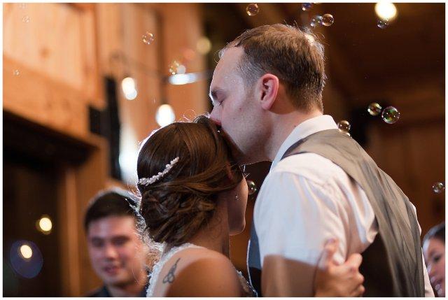Navy Blue Blue Ridge Mountain Wedding Faithbrooke Farm Vineyard Luray Virginia Wedding Photographers_7335