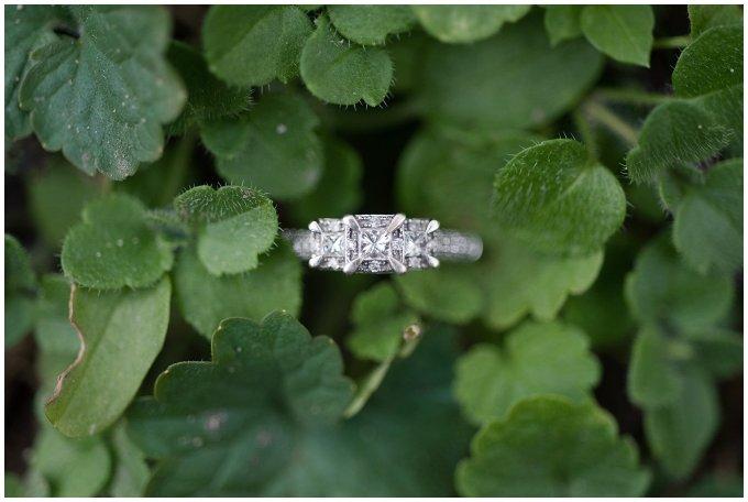 Windsor Castle Park Winter Engagement Session Virginia Wedding Photographers_7487