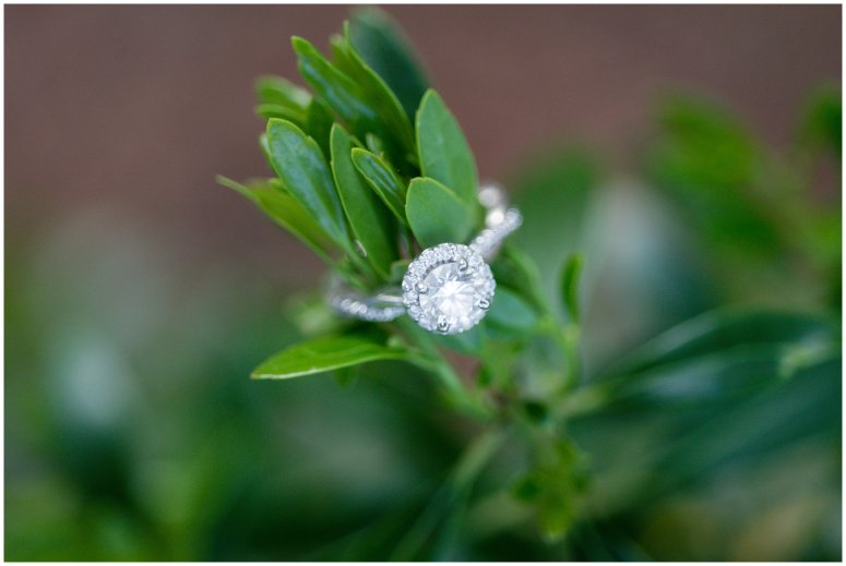 Virginia-Beach-First-Landing-State-Park-Engagement-Session_0846