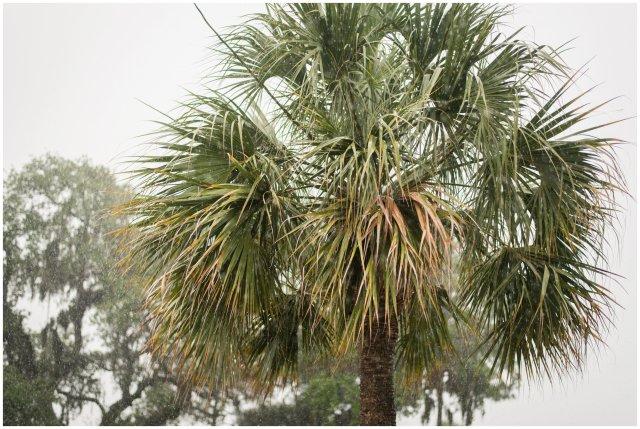 Callawassie-Island-Lowcountry-South-Carolina-Destination-Wedding_1034