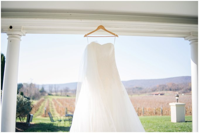 breaux-vineyard-purcellville-virginia-wedding_2598