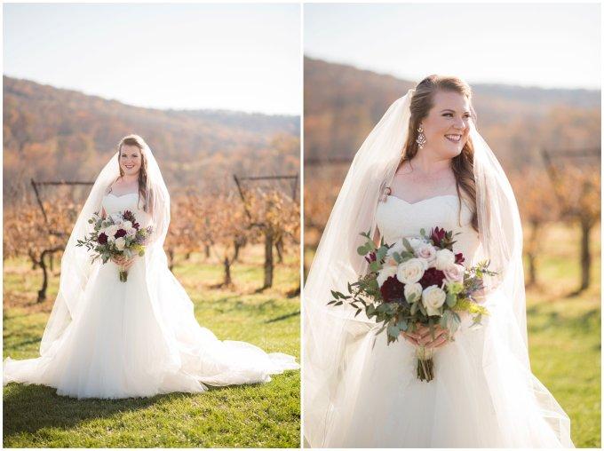 breaux-vineyard-purcellville-virginia-wedding_2639