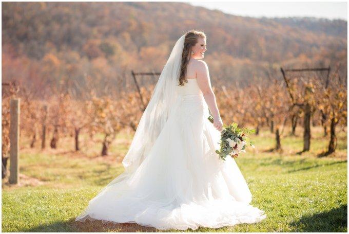 breaux-vineyard-purcellville-virginia-wedding_2641
