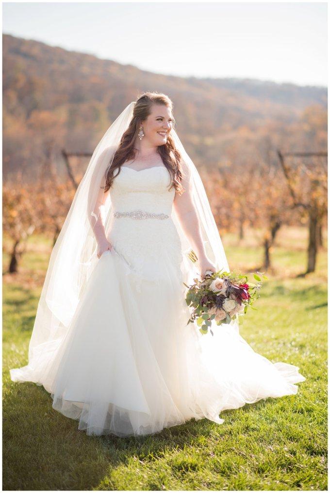 breaux-vineyard-purcellville-virginia-wedding_2644