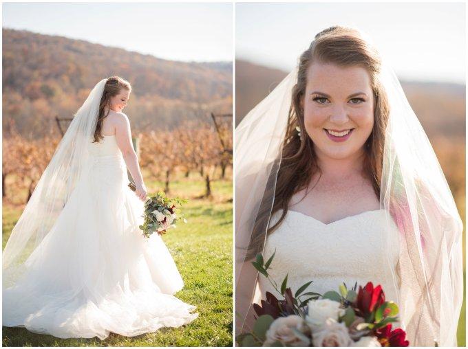breaux-vineyard-purcellville-virginia-wedding_2645