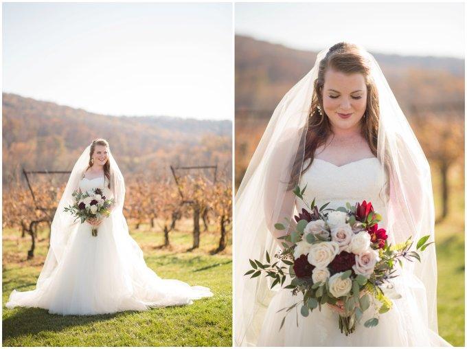 breaux-vineyard-purcellville-virginia-wedding_2647