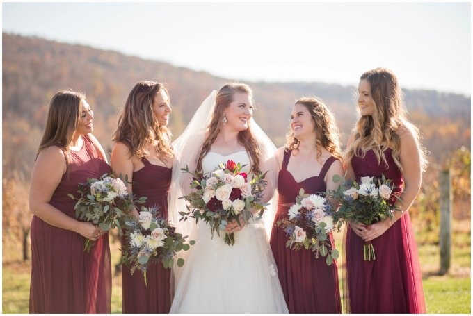 breaux-vineyard-purcellville-virginia-wedding_2649