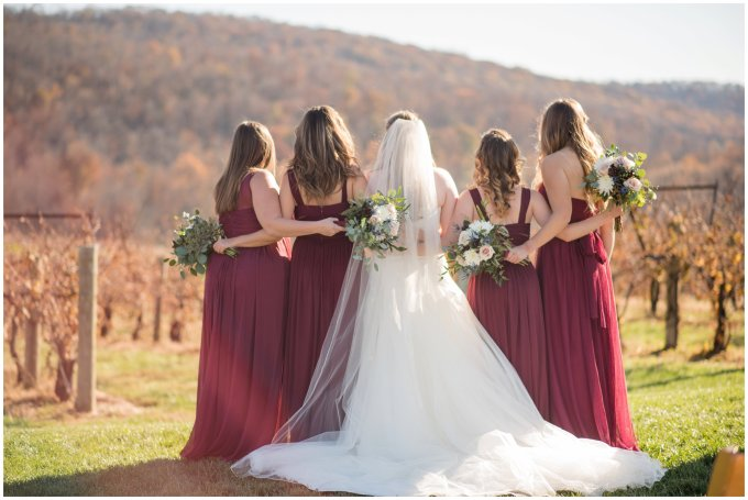 breaux-vineyard-purcellville-virginia-wedding_2655
