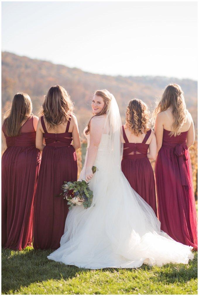 breaux-vineyard-purcellville-virginia-wedding_2657