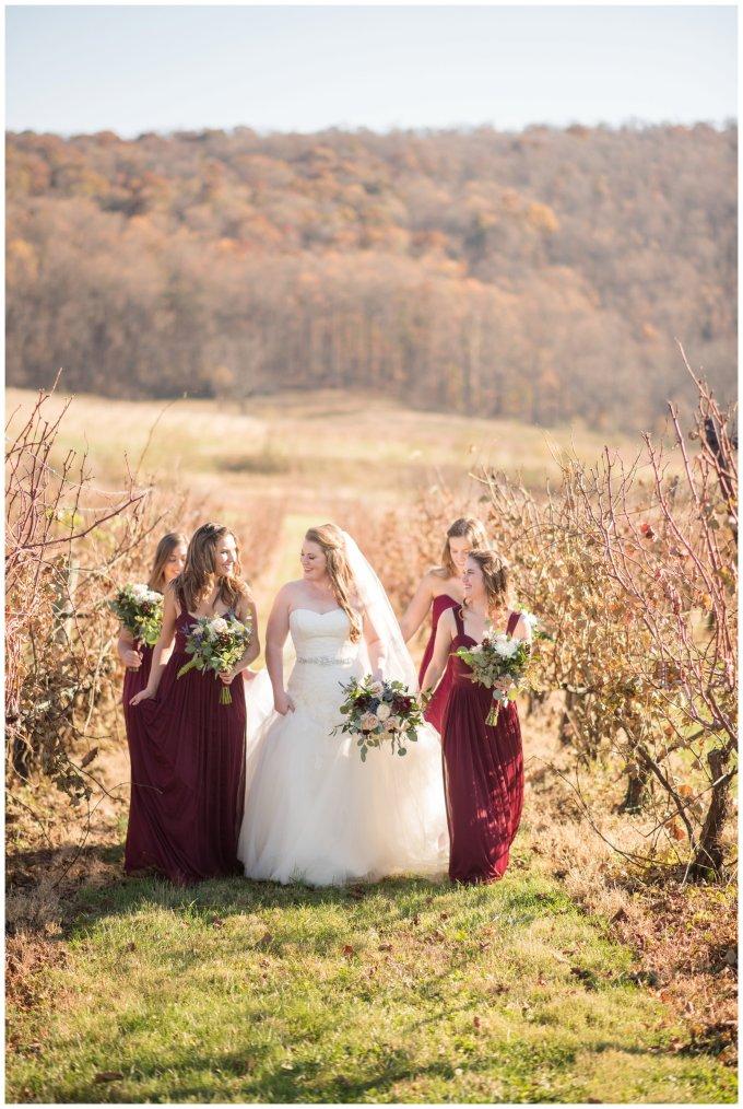 breaux-vineyard-purcellville-virginia-wedding_2660