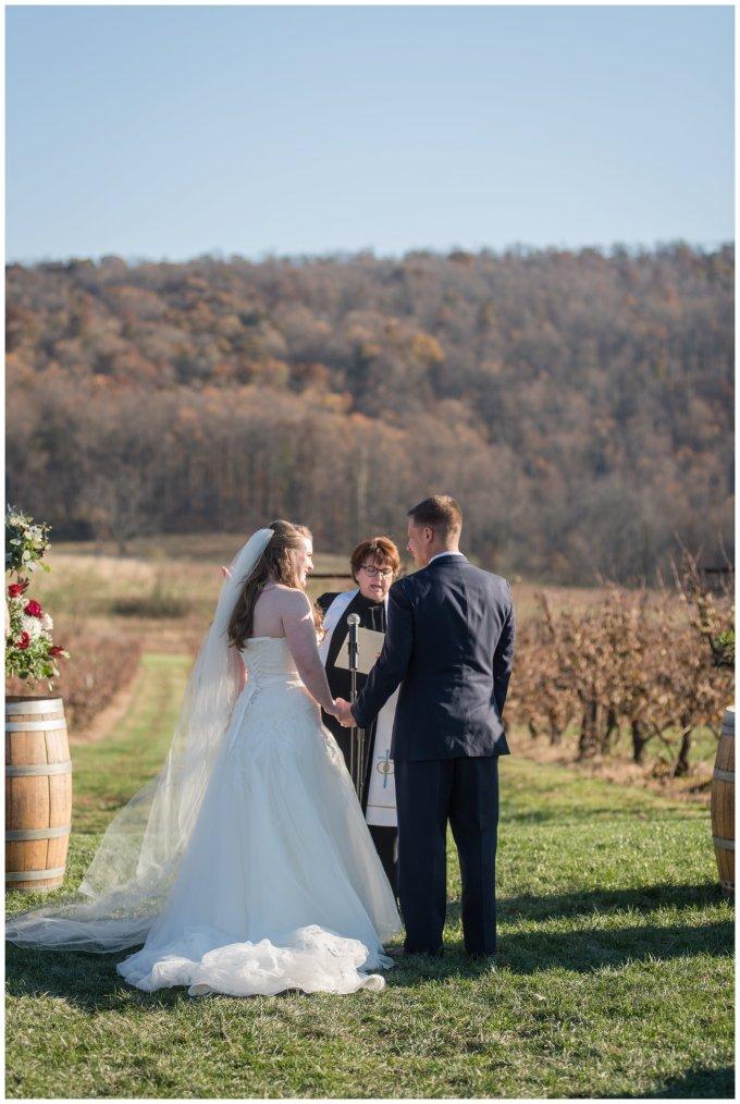 breaux-vineyard-purcellville-virginia-wedding_2674