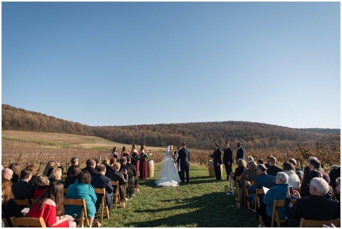 breaux-vineyard-purcellville-virginia-wedding_2675