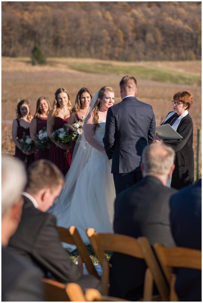 breaux-vineyard-purcellville-virginia-wedding_2676