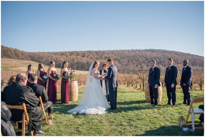 breaux-vineyard-purcellville-virginia-wedding_2683