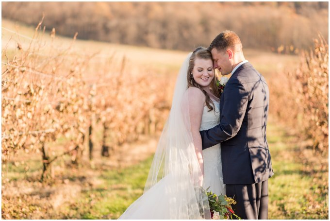 breaux-vineyard-purcellville-virginia-wedding_2698