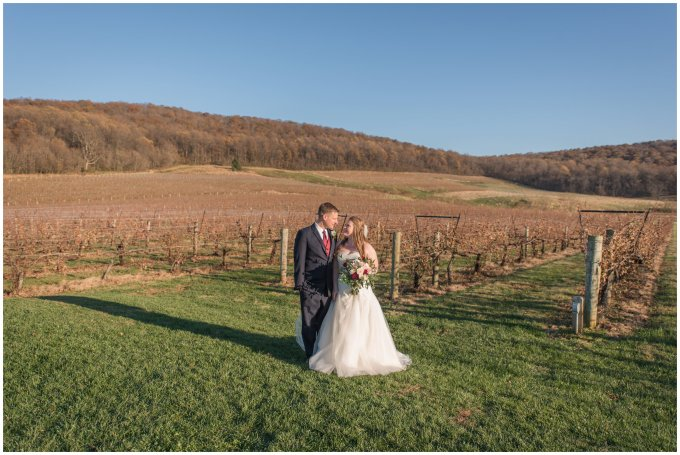 breaux-vineyard-purcellville-virginia-wedding_2706