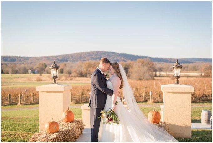 breaux-vineyard-purcellville-virginia-wedding_2717