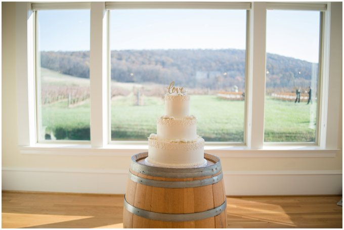 breaux-vineyard-purcellville-virginia-wedding_2728