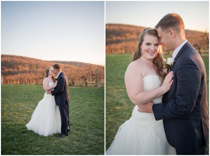 breaux-vineyard-purcellville-virginia-wedding_2742