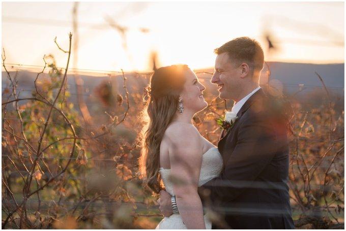 breaux-vineyard-purcellville-virginia-wedding_2744