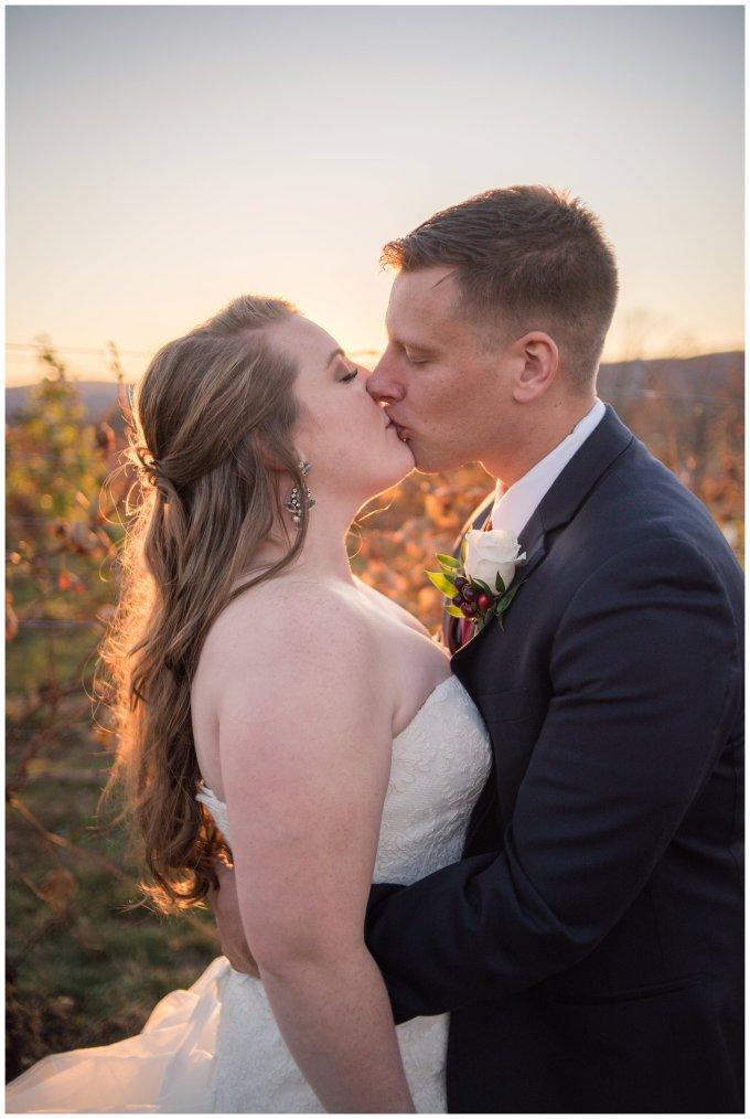 breaux-vineyard-purcellville-virginia-wedding_2745