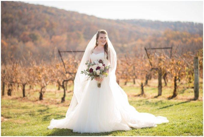 bridal-portrait-virginia-wedding-photographer_3266