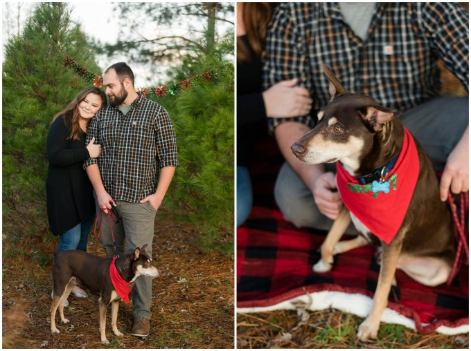 christmas-tree-farm-mini-sessions-suffolk-virginia_3014
